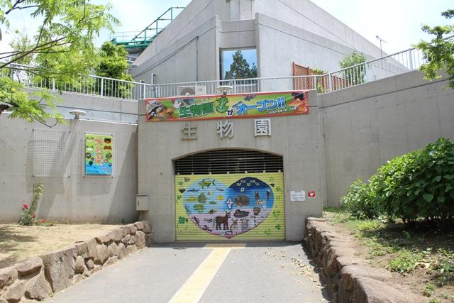 元淵江公園 (19)