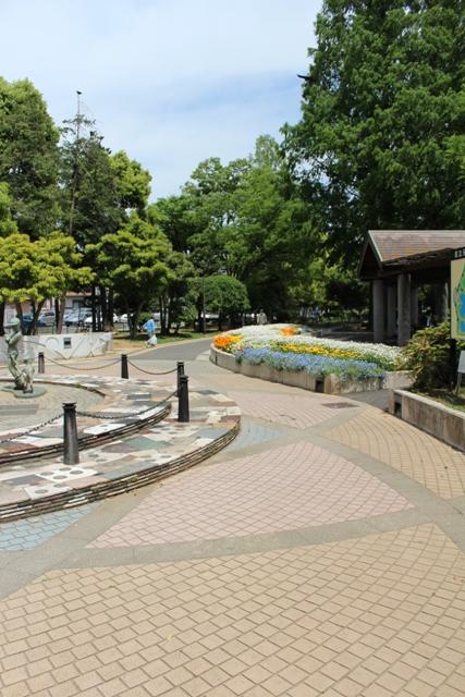 元淵江公園 (4)