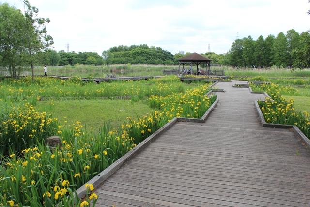 舎人公園5