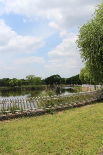 舎人公園9